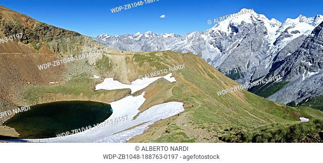 lago dOro Golden alpine Lake, Mt Ortles 3905 m, Venosta Valley, Stelvio National Park, Sudtirol-Lombardy, the Alps, Italy