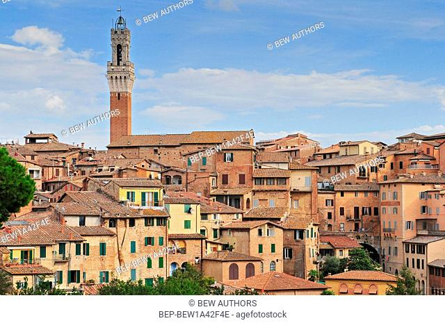 View over the old town towards the Torre del Mangia on the Palazzo Publico, Siena, Tuscany, Italy
