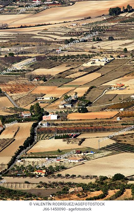 Cultivated fields near Agres, Sierra Mariola Natural Park, Alicante province, Comunidad Valenciana, Spain