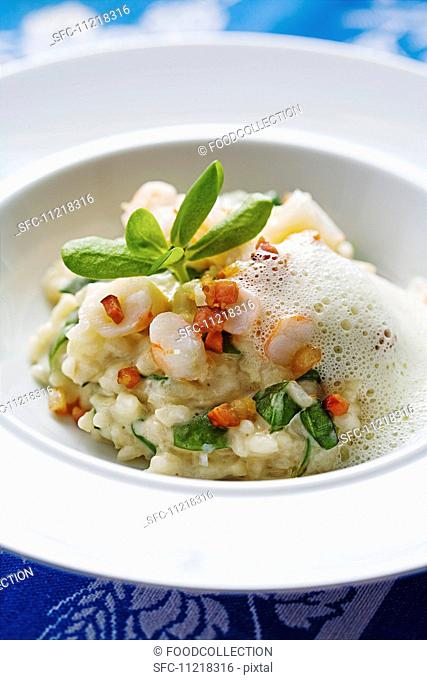 Purslane risotto with langoustine