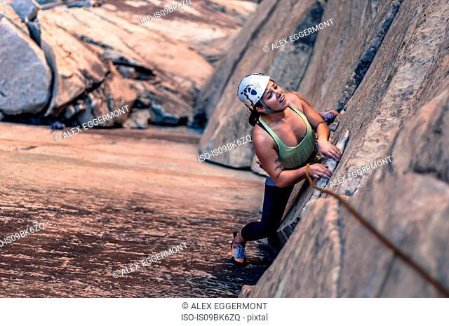 Rock climber rock climbing, Red Rock, Las Vegas, Nevada, United States