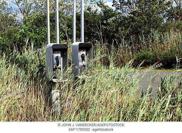 Two old pay phones abandoned and overgrown with brush along a roadside  Lyndhurst, New jersey, USA