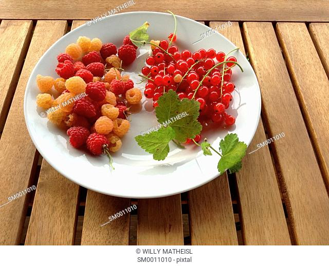 red currant and raspberry on white plate