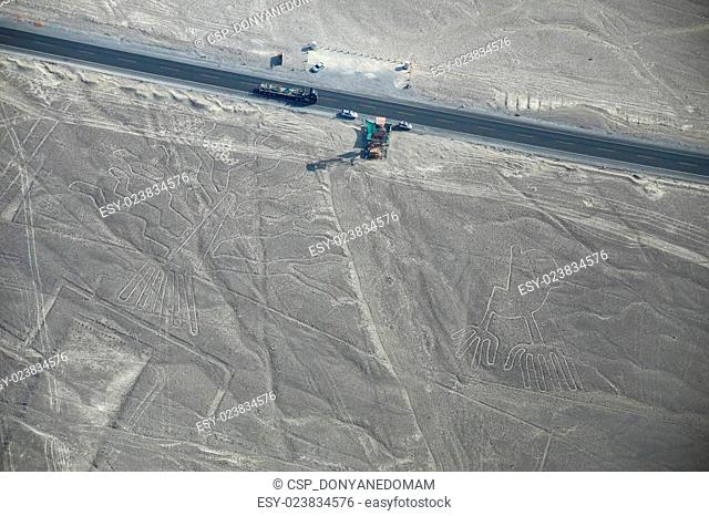 Aerial view of Nazca Lines - Tree and Hands geoglyphs, Peru