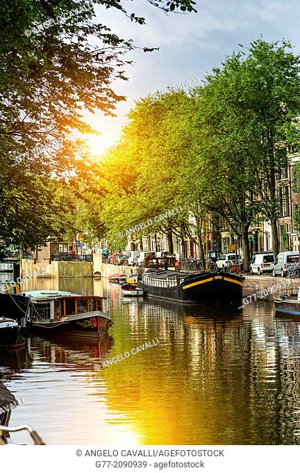 Old Amsterdam, Amsterdam, Netherlands