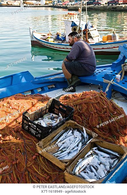 A fisherman and his catch, in the harbour at Pylos, Messinia, Southern Peloponnese, Greece
