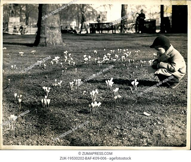 Feb. 02, 1953 - Signs of Spring: Following the recent floods and bad weather - our photographer couldn't resist taking this picture of little 4-year old Peter...