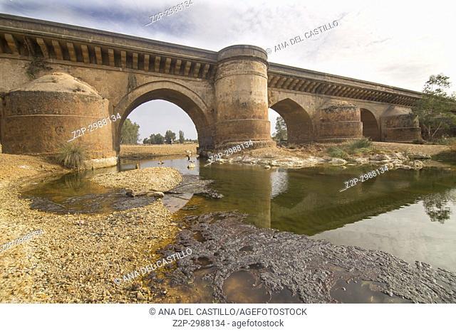 Roman bridge and Rio Tinto in Niebla village Huelva province Andalusia Spain