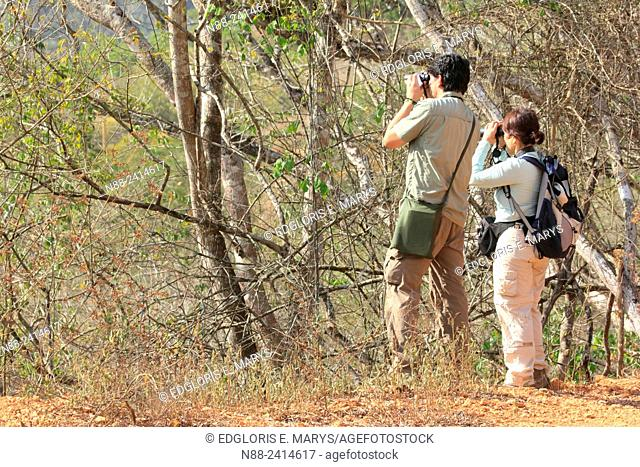 Birders, Paracotos, Venezuela