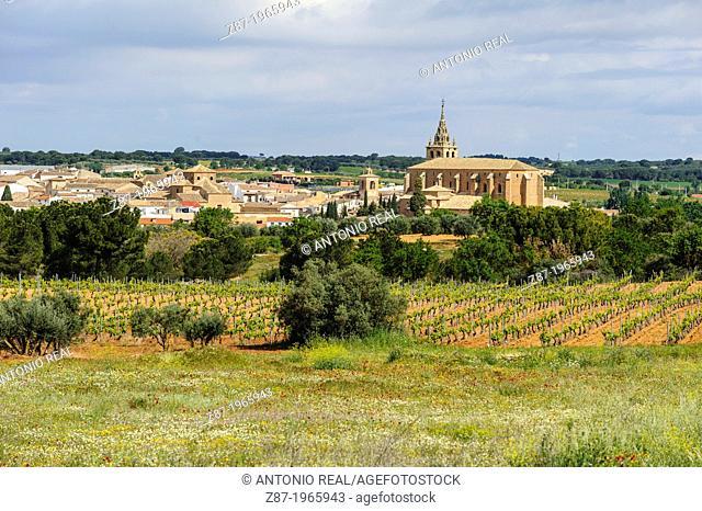 Villanueva de La Jara. Province of Cuenca. Spain