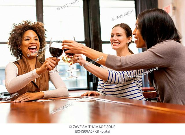 Friends toasting at wine bar