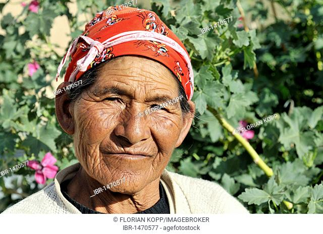 Old woman with a red headscarf, Bolivian Altiplano highlands, Departamento Oruro, Bolivia, South America