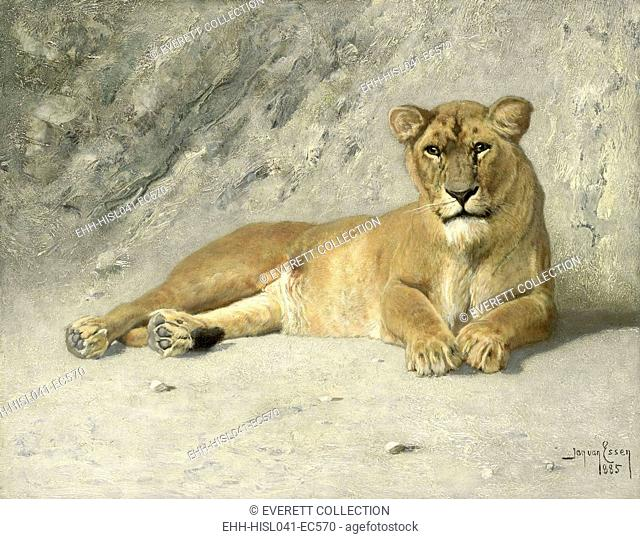 Lioness Resting, by Jan van Essen, 1885, Dutch painting, oil on panel. (BSLOC-2016-1-312)