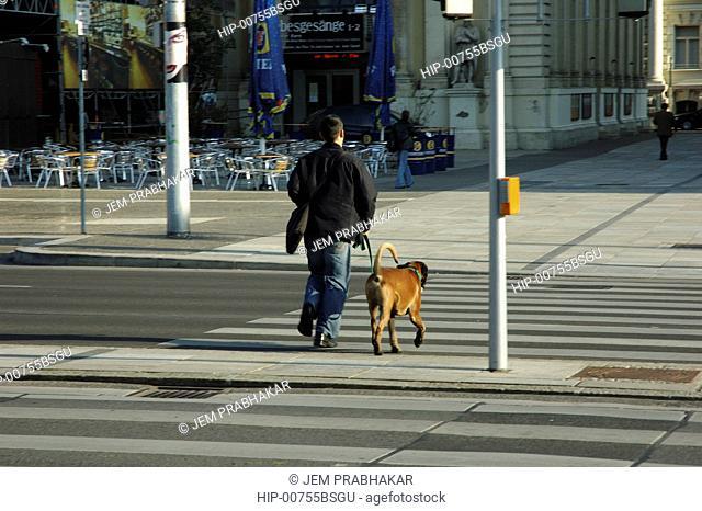 A MAN WALKING HIS DOG IN VIENNA, AUSTRIA