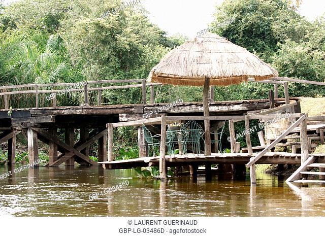 Nature, River, Pantanal, Mato Grosso do Sul, Brazil