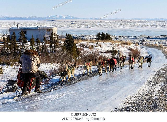 Jeff King runs down the glare ice road has he leaves Koyuk during the Iditarod Sled Dog Race 2014