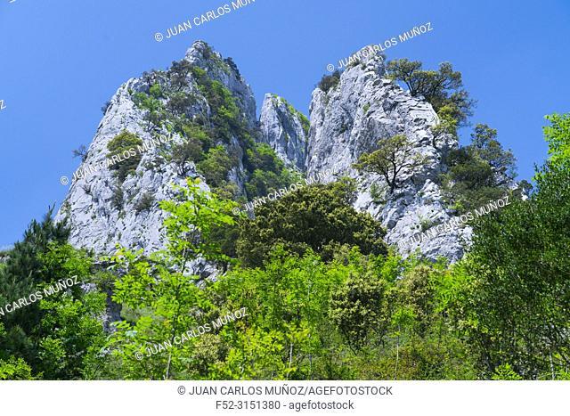 Atxarte canyon, Mendiola neighborhood, Urkiola Natural Park, Atxarte valley, Bizkaia, Basque Country, Spain, Europe