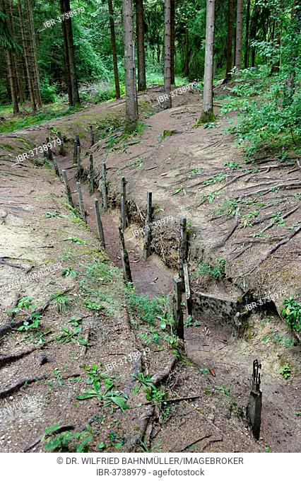 Old trenches from the First World War at Fort Douaumont, Verdun, Meuse departement, Lorraine region, France
