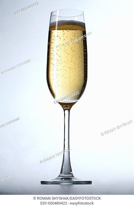 Celebration champagne on white background