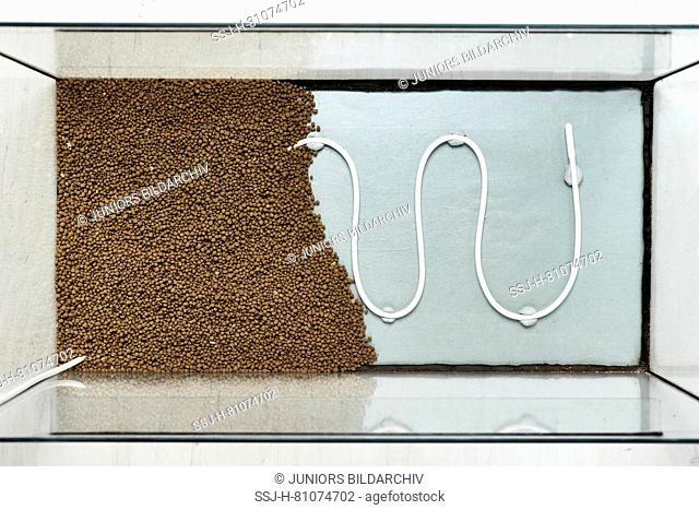 Setting up a fish tank: Undergravel heating in an empty aquarium