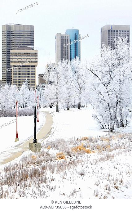 Winnipeg skyline on a scenic winter day. Trees covered in snow and frost. Winnipeg, Manitoba, Canada