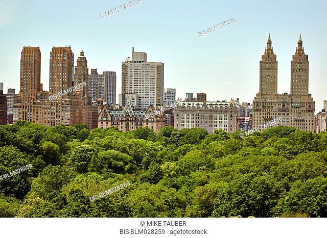 Skyline and tree tops, New York, New York, United States