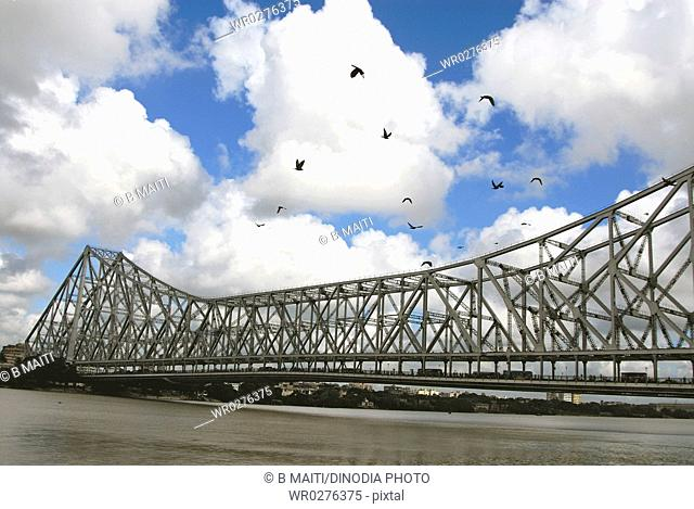 Kite Birds flying and Howrah Bridge at Calcutta , West Bengal , India