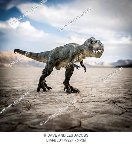 Tyrannosaurus rex dinosaur in desert field