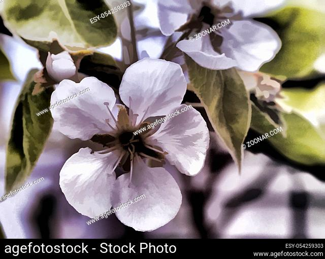 The pear tree with lots of pink and white flowers and buds in a green garden in spring on blue sky background