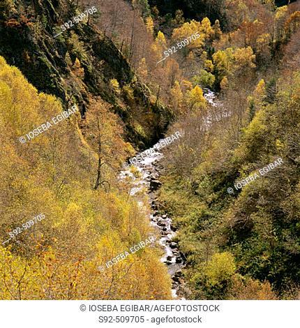 Vall d'Aran. Lleida province. Catalunya. Spain
