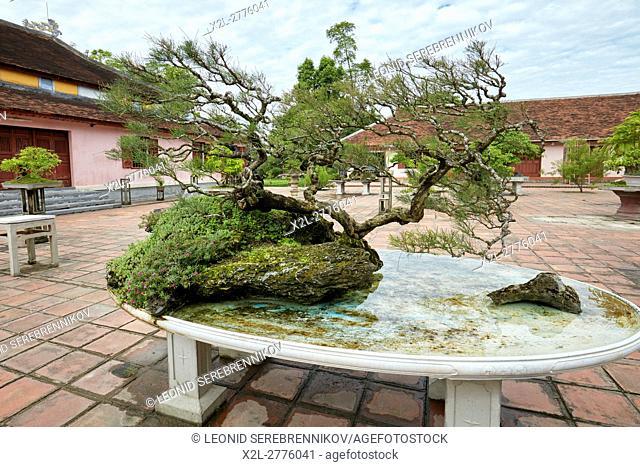 Bonsai garden at the Thien Mu Pagoda. Hue, Vietnam