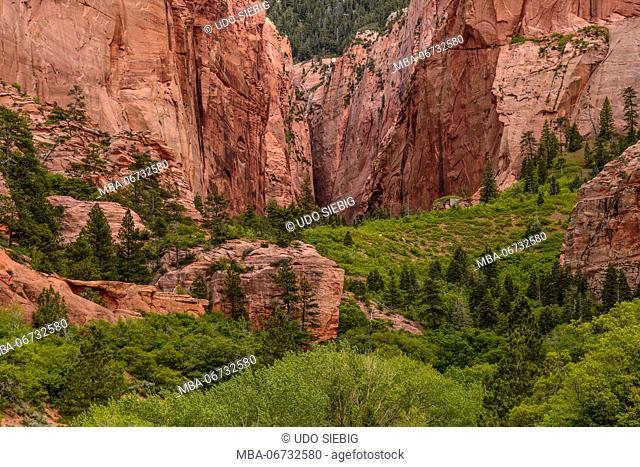 The USA, Utah, Washington county, Springdale, Zion National Park, Kolob canyons, Lengthening canyon