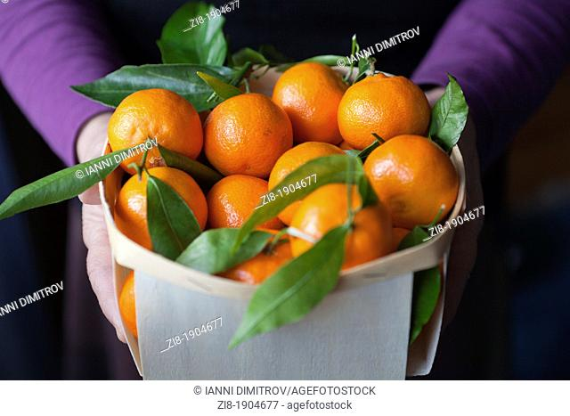Basket full of clementines -Citrus reticulata