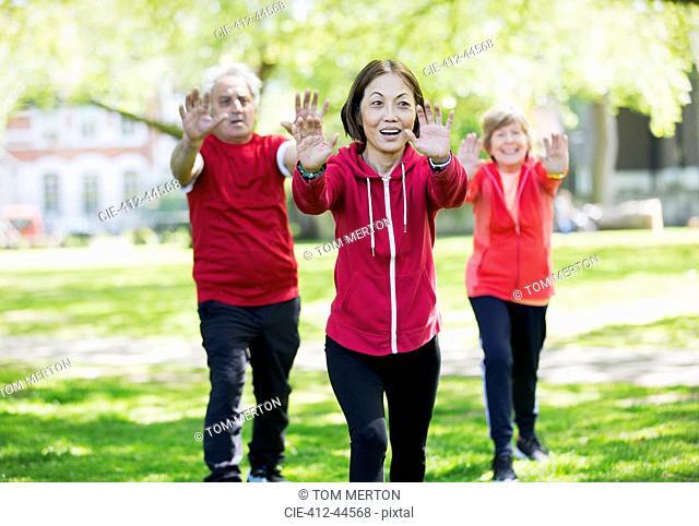 Active seniors practicing tai chi in park