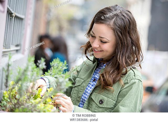 A woman tending a window box on a city street. Spring flowers