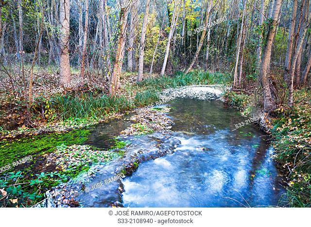 Dulce river in Aragosa. Guadalajara. Castilla la Mancha. Spain