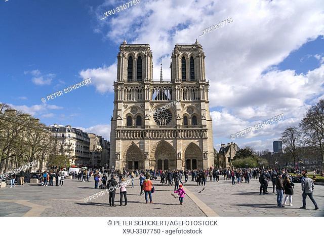 Kathedrale Notre-Dame, Paris, Frankreich   Notre-Dame cathedral, Paris, France