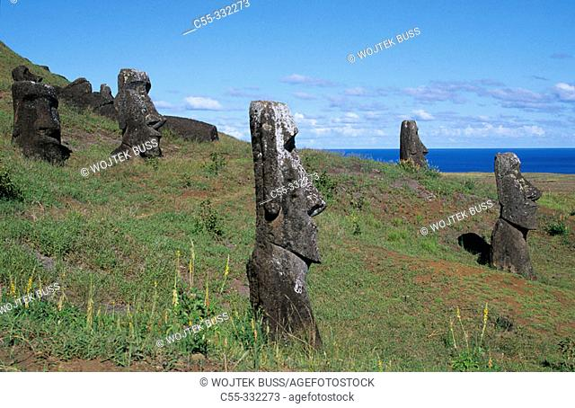 Moai quarry. Ranu Raraku. Easter Island. Chile