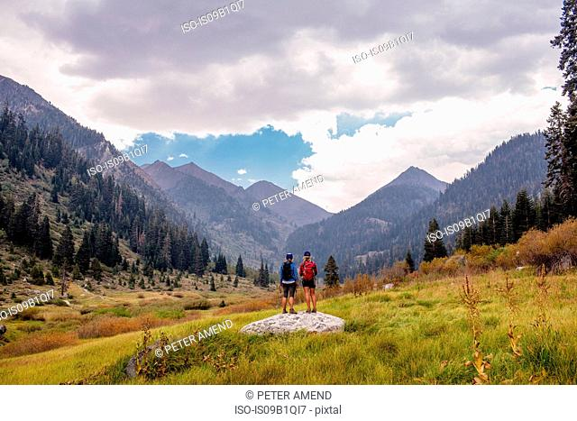 Two female hikers looking at view, rear view, Mineral King, Sequoia National Park, California, USA