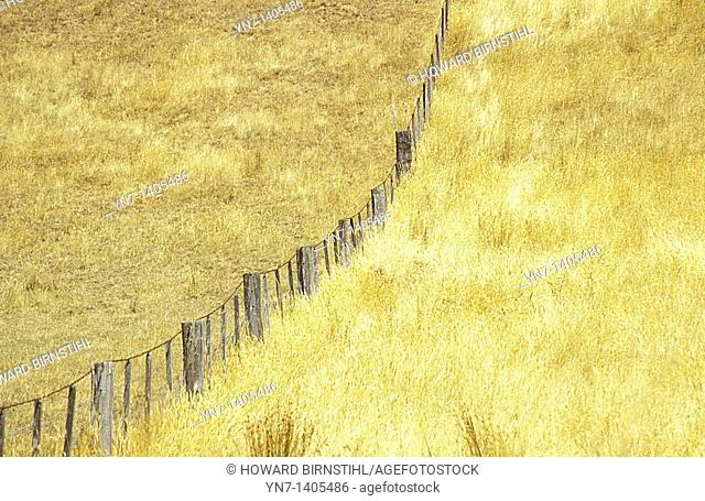 Paddocks in dry grass country divided by a fence which travels off into the distance and continues up a steep hill