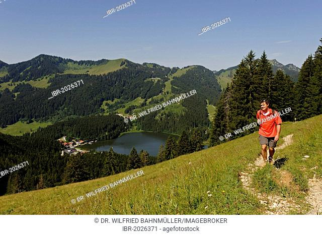 Hiker on the Obere Schoenfeldalm, mountain pasture, en route to Jaegerkamp in front of Mt Stuempfling and Mt Stolzenberg, Spitzingsee Lake, Upper Bavaria