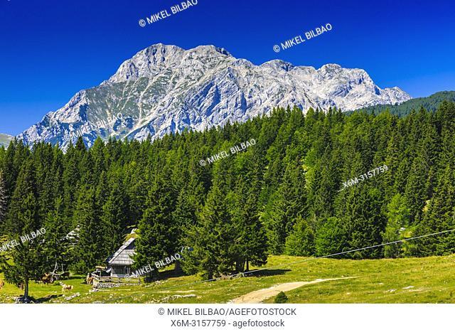 Mountains landscape. Velika Planina area. Upper Carniola region. Slovenia, Europe