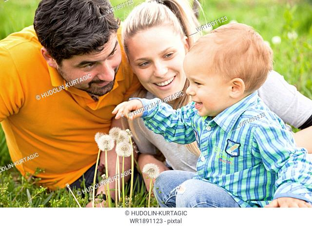 Parents with toddler boy playing in the meadow, Austria