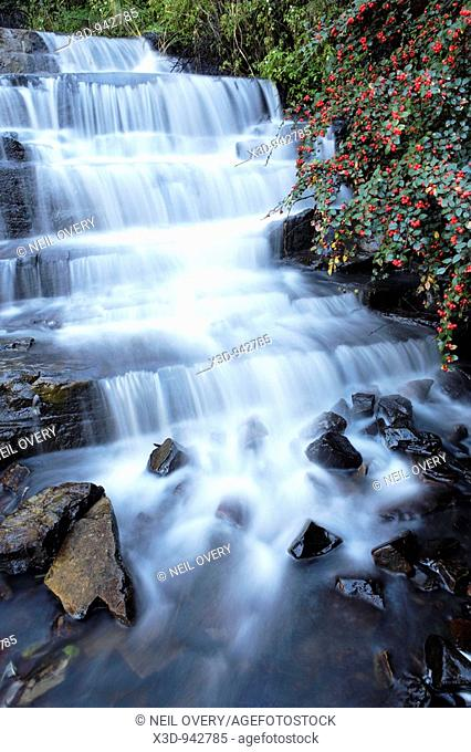Waterfall in Hogsback. South Africa