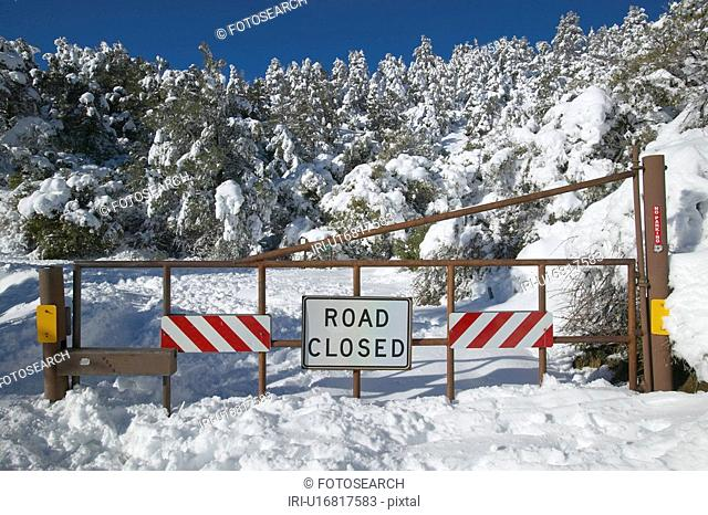 """Road Closed"" sign after fresh snowfall"
