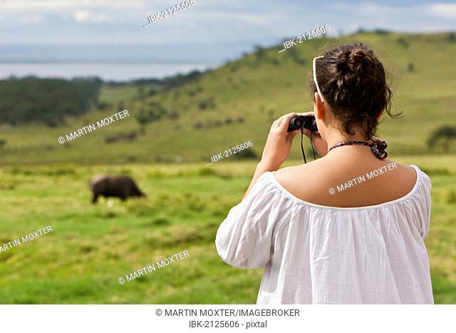 Girl, about 13 years, watching a buffalo through binoculars, Lake Nakuru Lodge, Lake Nakuru National Park, Kenya, East Africa, Africa, PublicGround