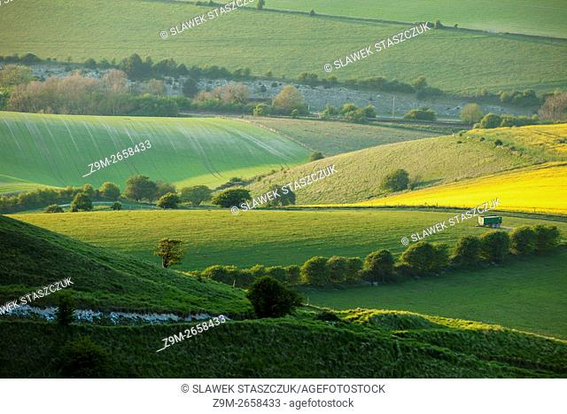Spring evening on the South Downs near Lewes, East Sussex, England