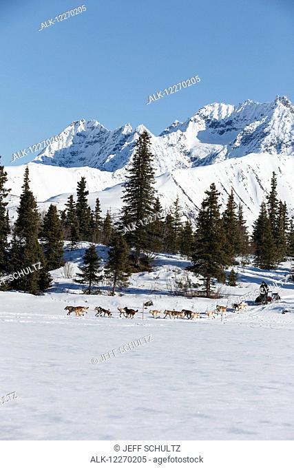 Dallas Seavey runs onto Puntilla Lake at the Rainy Pass checkpoint during the Iditarod Sled Dog Race 2014