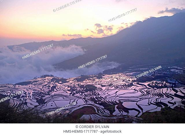 China, Yunnan province, Yuanyang, Cultural Landscape of Honghe Hani Rice Terraces, listed as World Heritage by UNESCO, Duoyishu village, rice terraces, sunrise