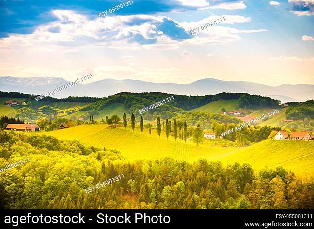 South styria vineyards landscape, near Gamlitz, Austria, Europe. Grape hills view from wine road in spring. Tourist destination, travel spot